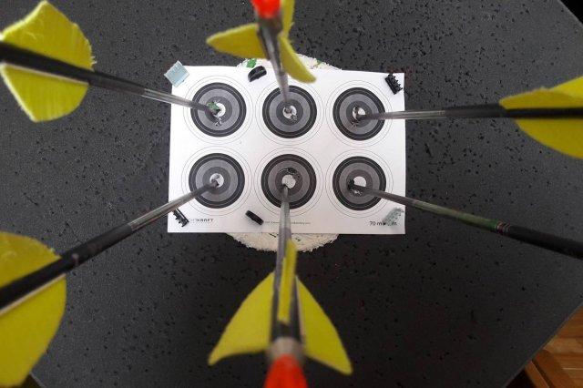 Šaudymas iš lanko
