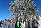 Europos sniego tinklinio čempionatas